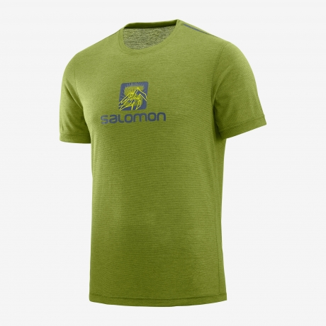Salomon Explore Graphic SS Tee Herre Avo...