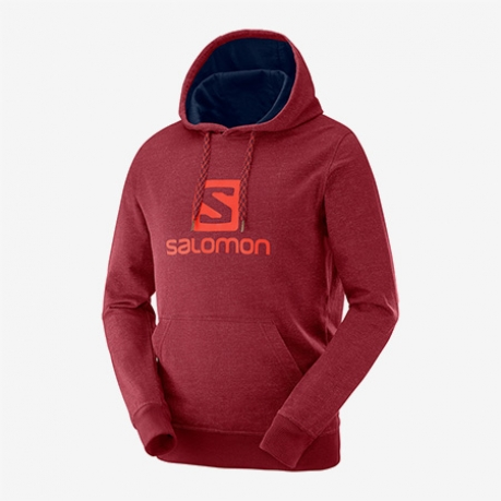Salomon Logo Hoodie Herre Biking Red